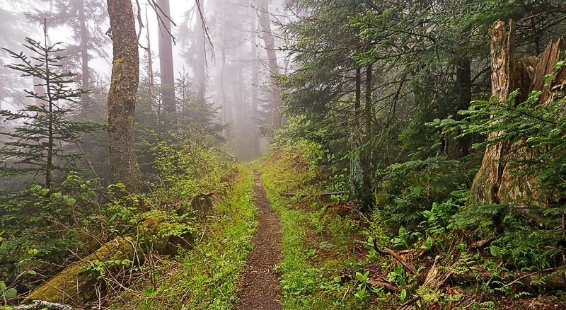 Smoky Mountain Hiking Trail